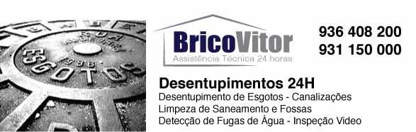 Desentupimentos Vila Boa